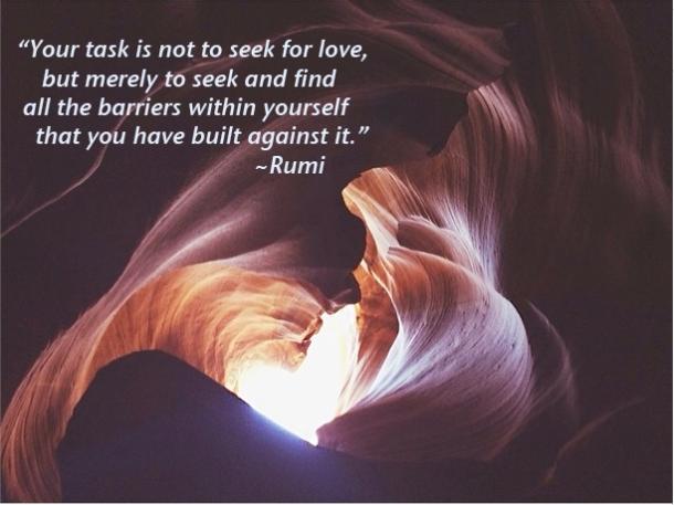 seek for love