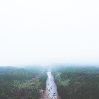 fog anna jones photo