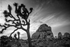 stones Anna Jones Photography